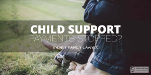 Child support payments stopped custody lawyer