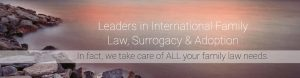surrogacy adoption family lawyer sydney